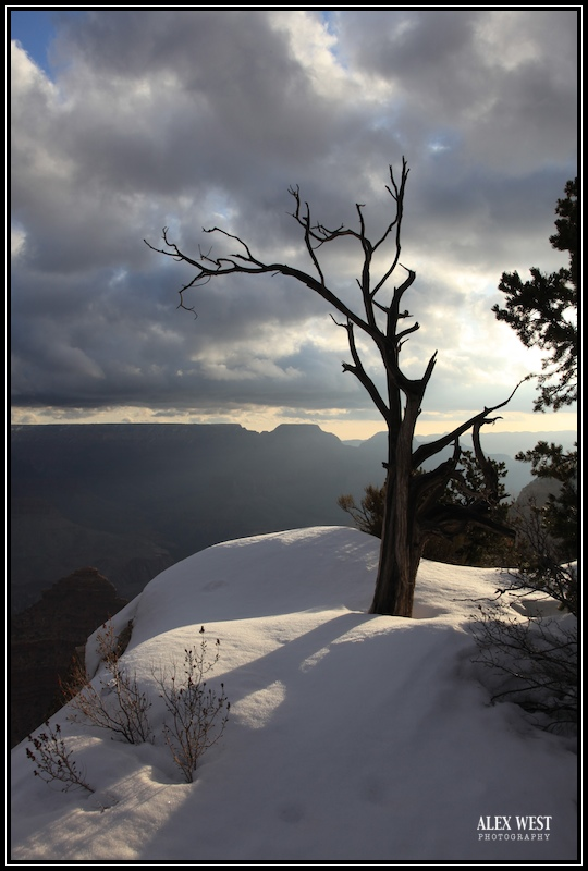 grand-canyon-landscape-photogaphy-2